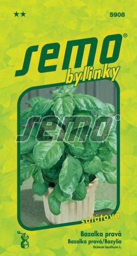 Bazalka pravá Lettuce Leaf 1g