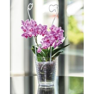 Kvetináč na orchideu diamant petit číry