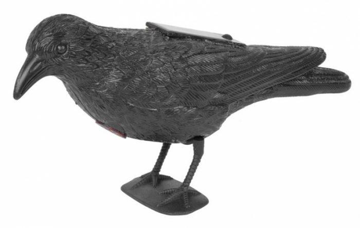 Plašič vtákov Havran čierny solárny so zvukom