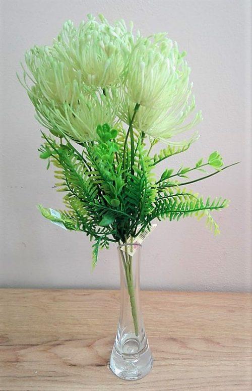 kytica protea